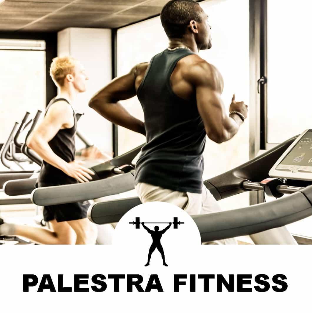 Palestra Fitness Climatizzata
