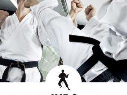 judo2-1-300×300