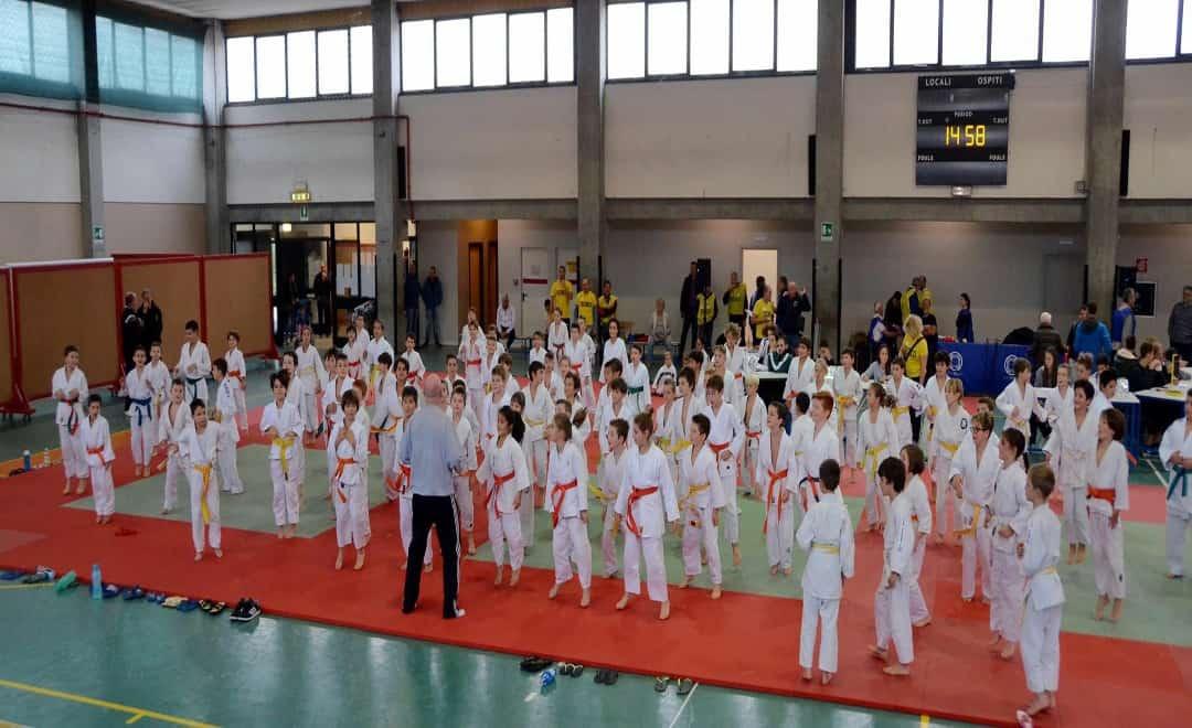Torneo delle Cinture: Piccoli Judoka Crescono